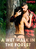 Cover for A Wet Walk in the Forest