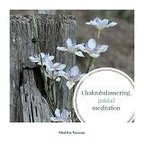 Cover for Chakrabalansering