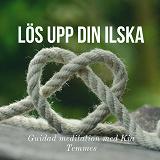 Cover for Lös upp din ilska
