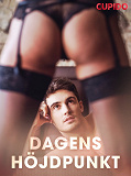 Cover for Dagens höjdpunkt