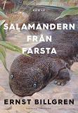 Cover for Salamandern från Farsta