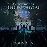 Cover for Äventyren på Hildasholm :  Malum