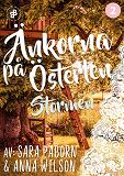 Cover for Änkorna på Österlen. Stormen