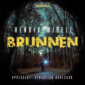 Cover for Brunnen