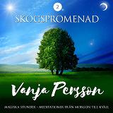 Cover for Meditation – Skogspromenad