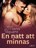 Cover for En natt att minnas - erotisk novell