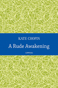 Cover for A Rude Awakening