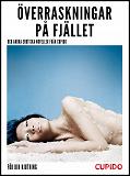 Cover for Överraskningar på fjället  – och andra erotiska noveller från Cupido