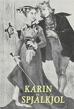 Cover for Karin Spjälkjol