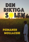 Cover for Den riktiga solen