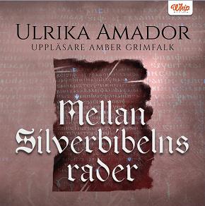 Cover for Mellan Silverbibelns rader