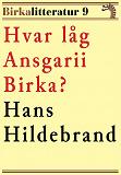 Cover for Hvar låg Ansgarii Birka? Birkalitteratur nr 9. Återutgivning av texter från 1872 och 1877