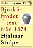 Cover for Björkö-fyndet. Redogörelse för undersökningarna under åren 1871–1873. Birkalitteratur nr 11