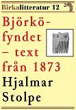 Cover for Björkö-fyndet. Birkalitteratur nr 12. Återutgivning av nyhetsartiklar från 1873