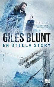 Cover for En stilla storm