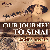 Cover for Our Journey to Sinai