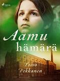 Cover for Aamuhämärä