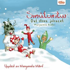 Cover for Det stora julracet
