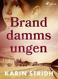 Cover for Branddammsungen