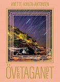Cover for Övertagandet : En fantasy-berättelse om kärlekens nödvändighet