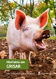 Cover for Minifakta om grisar