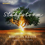 Cover for Släktstorm