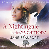 Cover for A Nightingale in the Sycamore