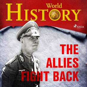 Cover for The Allies Fight Back