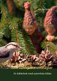 Cover for Den roliga boken för barn om våra vanligaste småfåglar: En bilderbok med autentiska bilder.