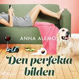 Cover for Den perfekta bilden