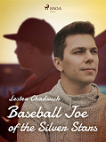 Cover for Baseball Joe of the Silver Stars