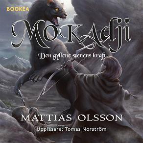 Cover for Mokadji: den gyllene stenens kraft