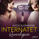 Cover for Queerlequin: Internatet