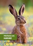 Cover for Minifakta om harar