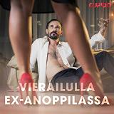 Cover for Vierailulla ex-anoppilassa