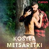 Cover for Kostea metsäretki