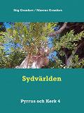 Cover for Sydvärlden Pyrrus och Kerk 4