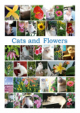 Cover for Cats and Flowers: 35 children song games