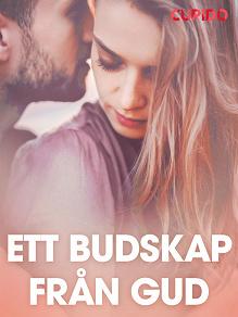 Cover for Ett budskap från Gud - erotiska noveller