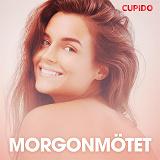 Cover for Morgonmötet - erotiska noveller