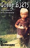 Cover for Gosse B3275 - Berättelsen om en stulen barndom