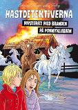 Cover for Hästdetektiverna. Mysteriet med branden på ponnyklubben