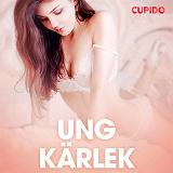 Cover for Ung kärlek - erotiska noveller
