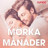 Cover for Mörka månader - erotiska noveller
