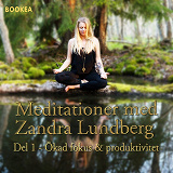 Cover for Ökad Fokus & produktivitet