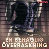 Cover for En behaglig överraskning - erotiska noveller