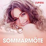Cover for Sommarmöte - erotiska noveller
