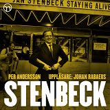 Cover for Stenbeck: En biografi över en framgångsrik affärsman