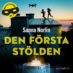 Cover for Den första stölden