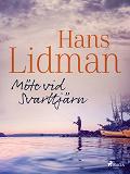 Cover for Möte vid Svarttjärn
